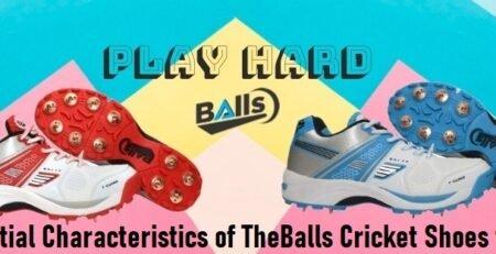 Cricket Shoes for Men